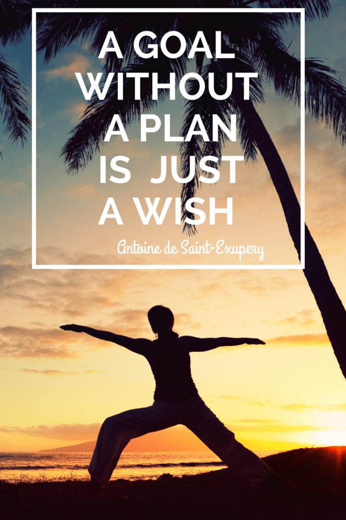 travel wellness programs
