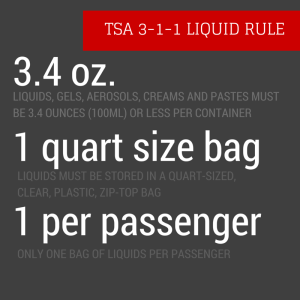 TSA Food Rules