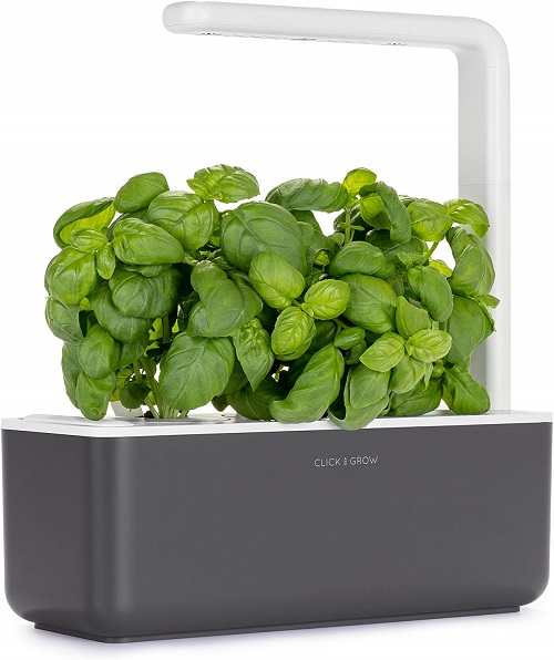 best gifts for travelers indoor garden